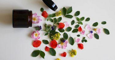 Jaké výhody přináší přírodní dekorativní kosmetika? Dokáže vás ochránit před černými tečkami i pupínky