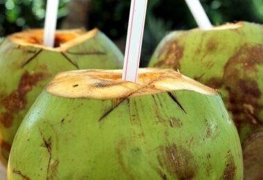 Kokosová voda: Drahý špás, nebo efektivní prostředek hydratace